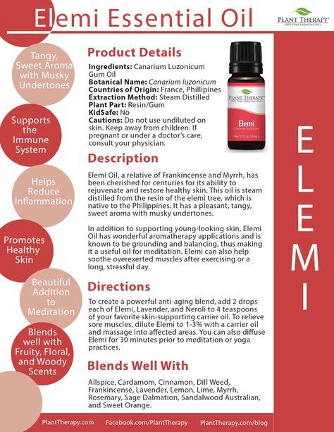 4 Ways To Use Elemi Essential Oil Essential Goodness Plant