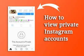 How Can You View Private Instagram Accounts In 2020 Instagram Private Account Buy Instagram Followers Instagram Accounts