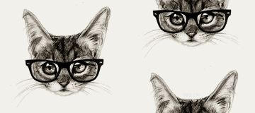 hipster cat beanie kitty lol hollister beanie tumblr
