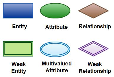 Entity Relationship Diagram  Organization