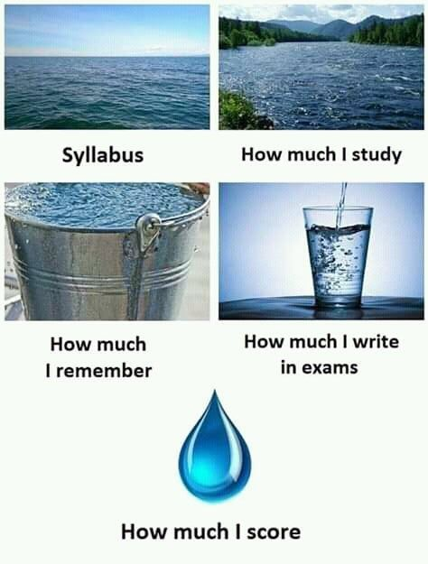 Reddit Funny How Much You Study In 2020 Funny School Memes Funny School Jokes Crazy Funny Memes