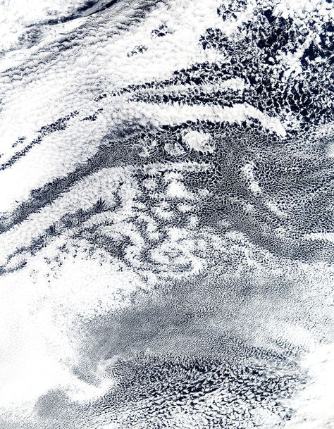 Open-cell and closed-cell clouds off Peru. Original from NASA. Digitally enhanced by rawpixel. | free image by rawpixel.com