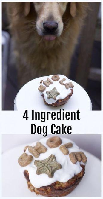 Single Dog Cake Recipe Grain Free Recipe Dog Friendly Cake