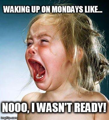 Pin By Sandy Demaris On Felippo Monday Memes Funny Monday Memes Monday Humor