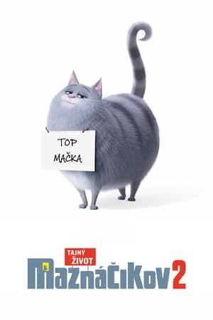 Videa Online The Secret Life Of Pets 2 Tahun Magyarul Online Hungary Hd Teljes Film Indavideo