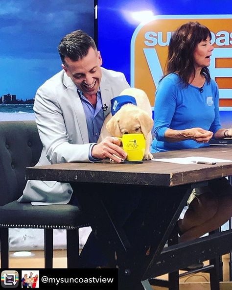 I had a thirsty puppy on my hands!  Repost from @mysuncoastview - Joeys puppy was thirsty & Stephanies puppy was feisty. We had fun with @seguidedogs this morning on Suncoast View!