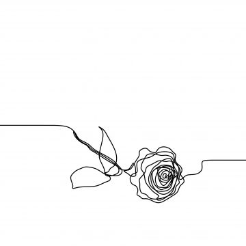 One line art of rose flower continuous single lines drawing free template PNG and Vector | Flower line drawings, Line art flowers, Rose line art