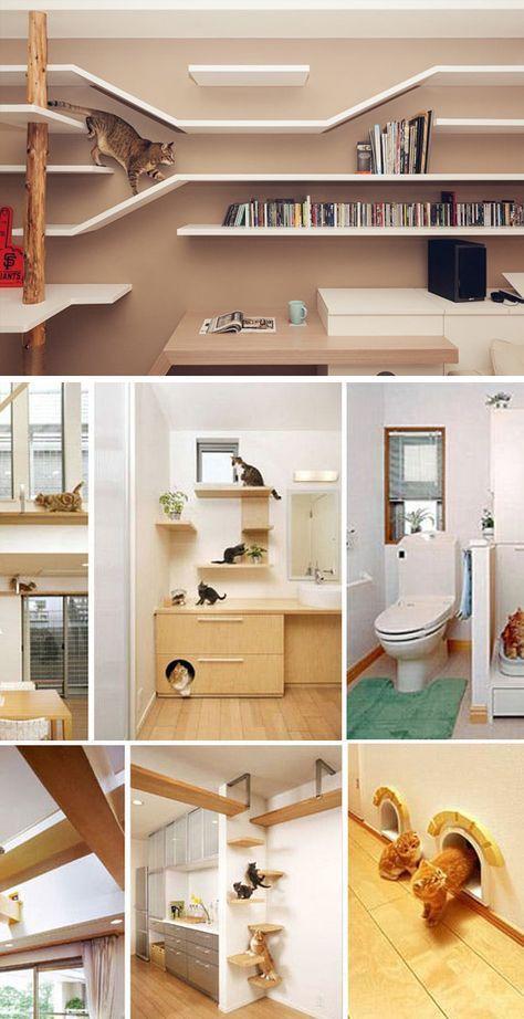 20 Creative Indoor Cat Playground Ideas Home Design Lover Cat Houses Indoor Cat Playground Cat Room