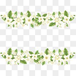 ناقلات بابوا نيو غينيا Png المتجهات Psd قصاصة فنية تحميل مجاني Pngtree White Flower Png Wedding Borders Flower Border