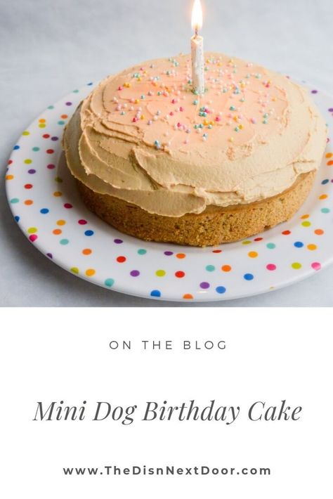 This Mini Dog Birthday Cake with peanut butter and banana is so easy to make and sooo worth watching your dog's excitement as you make it. Dog Birthday Cake Source by thedishnextdoor The post Dog Birthday Cake appeared first on Welch Puppies. Dog Cake Recipes, Dog Biscuit Recipes, Dog Treat Recipes, Dog Food Recipes, Easy Dog Cake Recipe, Dog Birthday Cake Recipe Peanut Butter, Dog Birthday Cake Frosting Recipe, Dog Frosting Recipe, Cake Dog