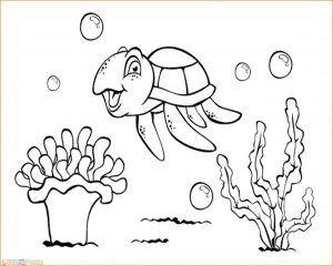 17 Gambar Animasi Binatang Laut Saat Ini Tulisan Yang Tersaji Di Hadapan Pembaca Ini Merupakan Penyebutan Secara Umum Jenis Sketsa Gambar Hewan Binatang Aneh