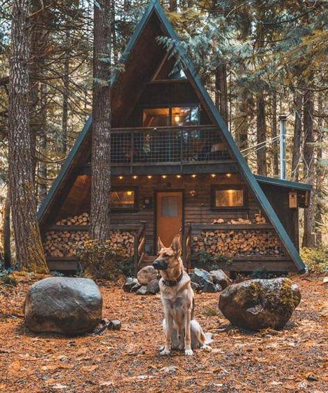 Du bois et encore du bois pour cette maison au milieu de la forêt #house #maison #wood #maisonatypique #nature