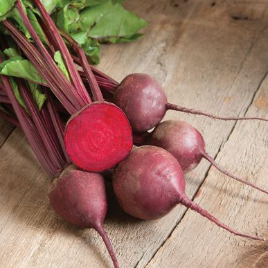 Red Ace Pelleted F1 Beet Seed Johnny S Selected Seeds Beet Seeds Easy Vegetables To Grow Organic Seeds