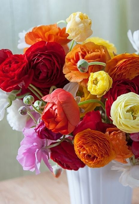 Ranunculus Flowers Centerpiece Flowers Good Morning Flowers Morning Flowers