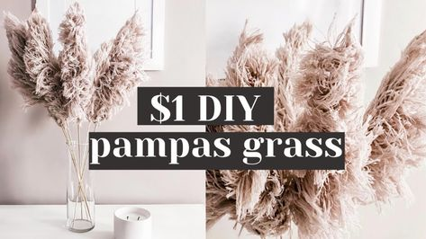 Easy DIY String Pampas Grass from Dollar Tree Materials! - YouTube