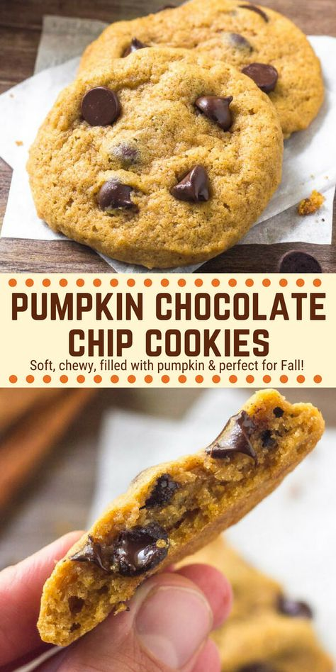 Turn your favorite chocolate chip cookies into the perfect fall treat. These pumpkin chocolate chip cookies are soft & chewy with a delicious pumpkin spice flavorand lots of melty chocolate chips. These chocolate chip pumpkin cookies are quick, easy & completely addictive. #pumpkin #cookies #chocolatechipcookies #pumpkincookies #fall #recipes #baking #desserts