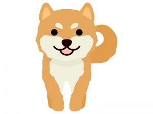最高の壁紙 柴犬 かわいい イラスト 子犬 イラスト かわいいイラスト 仲良し イラスト