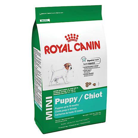 Royal Canin Mini Puppy Food Dog Dry Food Petsmart Small Breed Dog Food Puppy Food Mini Puppies