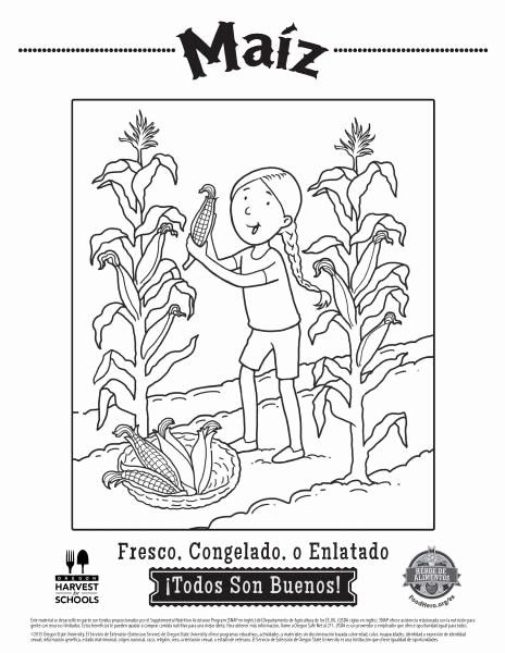 Coloring Book In Spanish New Food Coloring Pages In Spanish Coloring Sheets Coloring Pages Vegetable Coloring Pages