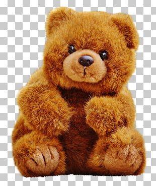 Teddy Bear Png Clipart Teddy Bear Free Png Download Teddy Bear Images Cute Teddy Bears Bear Images