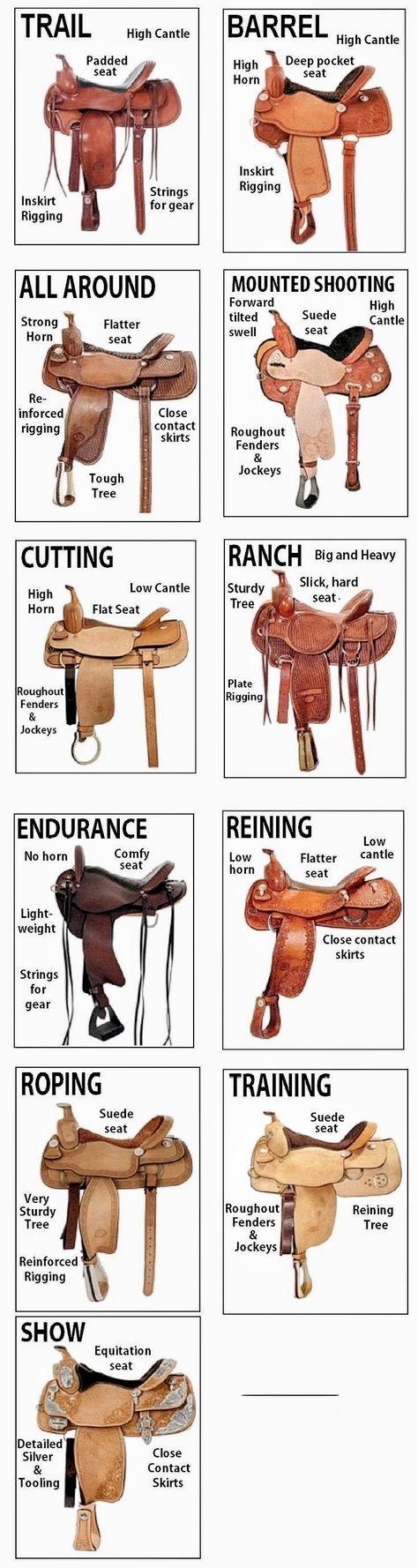 Western saddle comparisons western saddle comparisons - Art Of Equitation Horse Gear, Horse Riding Tips, Horse Tips, Western Horse Riding, Cowboy Horse, Pretty Horses, Horse Love, Beautiful Horses, Cavalo Wallpaper