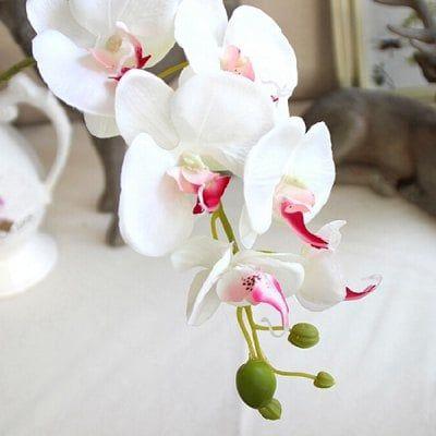 European Style Phalaenopsis Artificial Flowers Sale Price Reviews