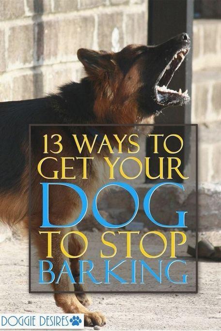 Dog Training Kennels Dog Training Whistle Sound Petco Dog