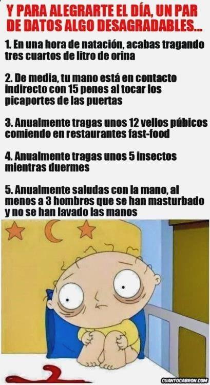 Pasala Bien Con Lo Mejor En Hacer Memes En Espanol Gifs Animados Email Chistes Malos De Unicornios Gifs Wont Play On I New Memes Memes Memes Funny Faces