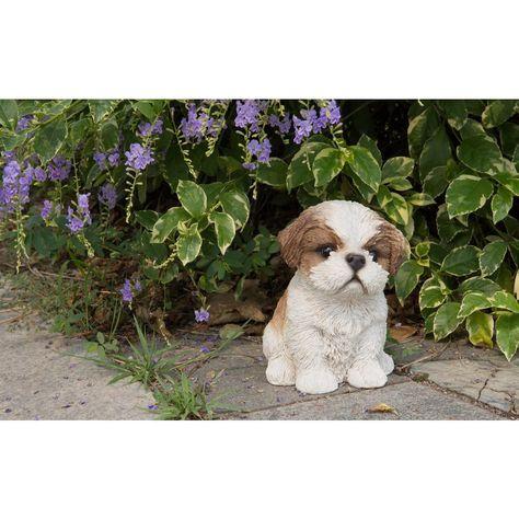 Shih Tzu Puppy Brown And White Statue 87771 A Shih Tzu Puppy