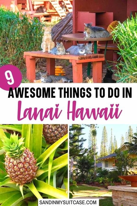 9 Awesome Things to do in Lanai Hawaii
