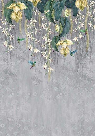 Trailing Orchid tapet från Osborne & Little® (OL256-02 ...