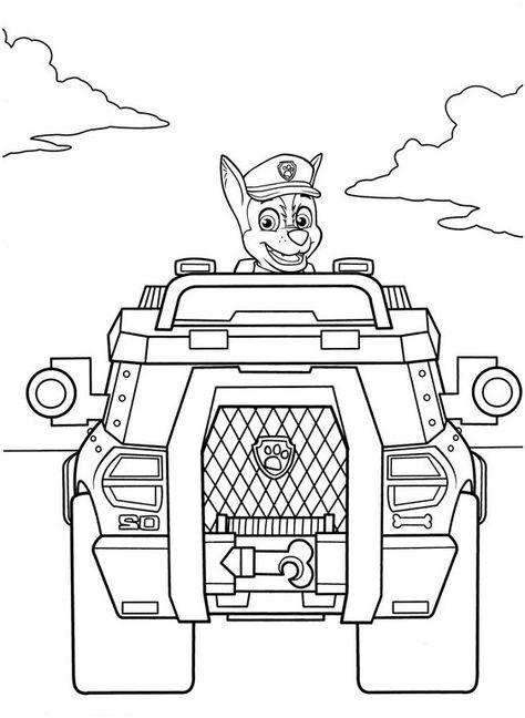 20+ mejores imágenes de Paw Patrol, patrulla canina para