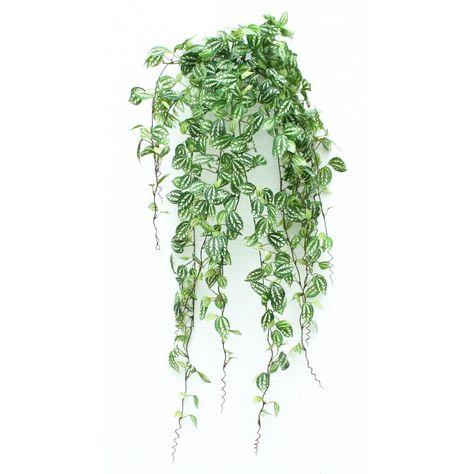 plante retombante   Accueil > Plantes artificielles > Plantes artificielles retombantes ...