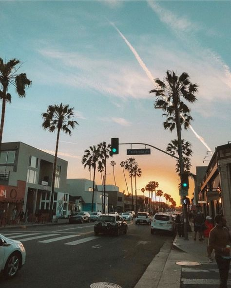 California Aesthetic West Coast Palm Trees Instagram Picture Ideas Travel Photography Trav In 2020 Los Angeles Travel California Pictures Los Angeles Travel Guide