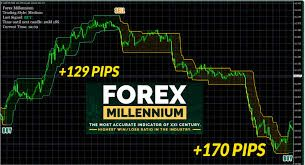 Forex Monarch In Live Action Good Introduction Forex Trading