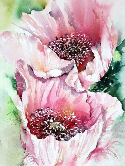 Mohn in Pink / Aquarell auf Arches Rough 23x31cm