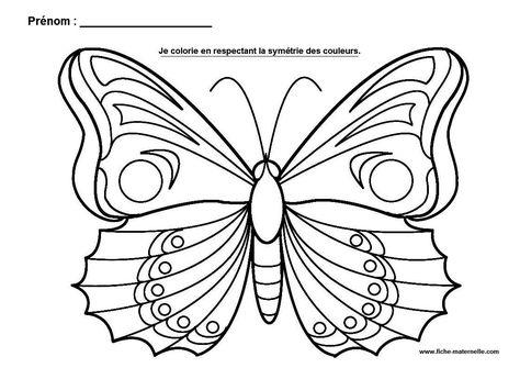 La Symetrie En Maternelle Coloriage Papillon Papillon A