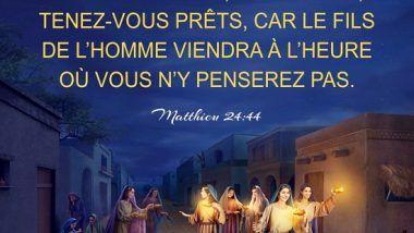 Évangile du jour – La connaissance de Job sur Dieu   Bible en ligne - Le  salut de Dieu   Texte biblique, Évangile, Bible