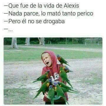 Memes Y Mas Humor Memes Funny