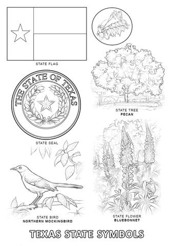 Texas State Symbols Coloring Page With Images Texas Symbols