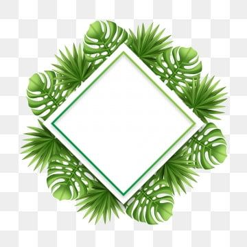 Tropical Frame Background Leaf Palm Summer Leaves Square Illustration Border Floral Card Green Jungle In 2020 Floral Border Design Tropical Frames Vector Illustration Psd files, png images, clipart, graphic, clothes, photoshop background, texture, brush, gradient, shape, action, font. pinterest