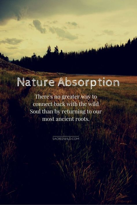 Nature Absorption There's no greater way to connect back with the wild soul than by returning to our most ancient roots.