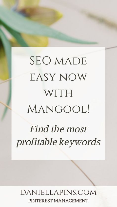Easy SEO with Mangool! Find the best profitable keywords and reach your ideal client. — daniella van