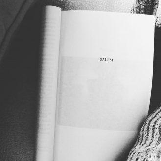 Chronique Litteraire Salem De Stephen King Aux Editions Le