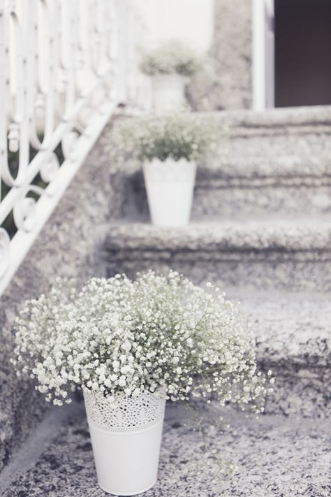 Babys breath in white vases from Ikea - by Andre Teixeira of Brancoprata Photography, Portugal/FOR FRONT DOOR OUTSIDE, BEFORE WALKING IN?