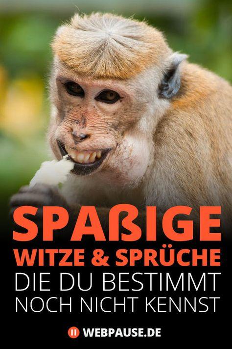 Man muss nicht unbedingt jeden Witz verstehen, damit man darüber lachen kann. #witze #lustig #spass #webpause