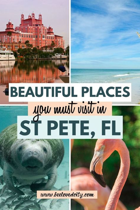 Going to St Pete, Florida soon? Check out the best things to do in St Petersburg! Things to do, places to visit, where to eat. we tell you everything about St Pete! St Petersburg FL things to do St Petes Beach Florida, Best Beach In Florida, Clearwater Beach Florida, Visit Florida, Tampa Florida, Florida Vacation, Florida Beaches, Naples Florida, Best Places In Florida