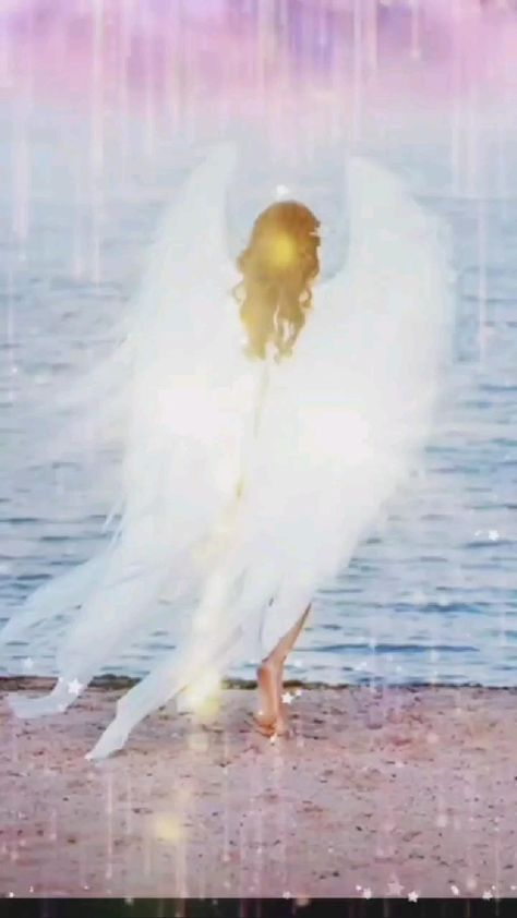 Angel 😇😇😇😇😇😇����������