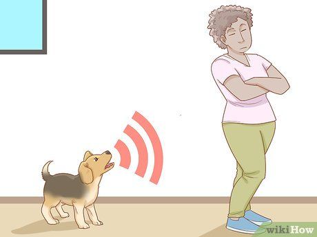 3 Ways To Stop A Puppy From Barking Excited Dog Puppies