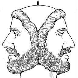 Anatomia Y Fisiologia Profesor Jano Es Victor M Vitoria